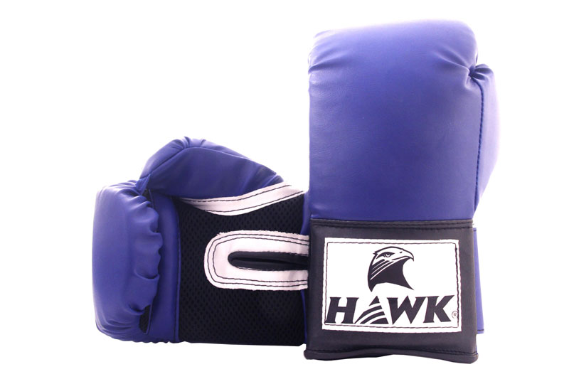 Best Boxing Gloves in India
